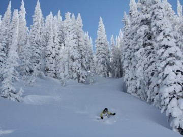 Steamboat-Powdercats-653x435.jpg