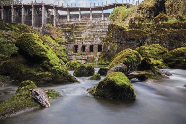 Now removed Elwha Dam, Olympic National Park - Photo: Ben Knight