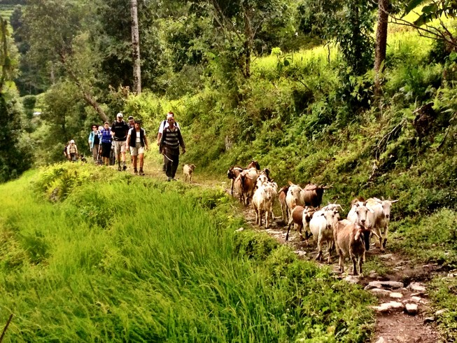 Trekking in Nepal | Photo: Doug Knuth