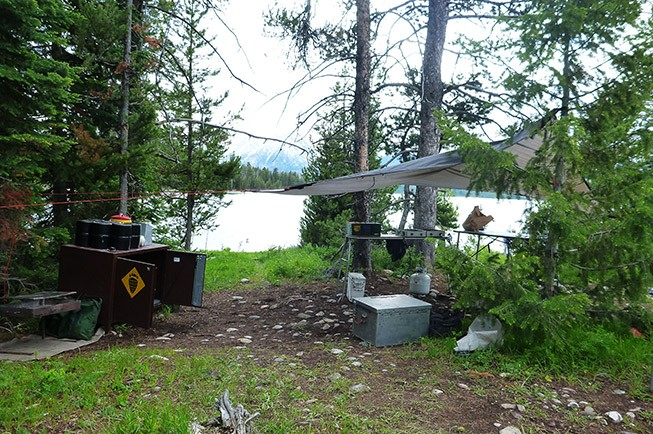 Traveling and Camping in Bear Country: Dos and Don'ts
