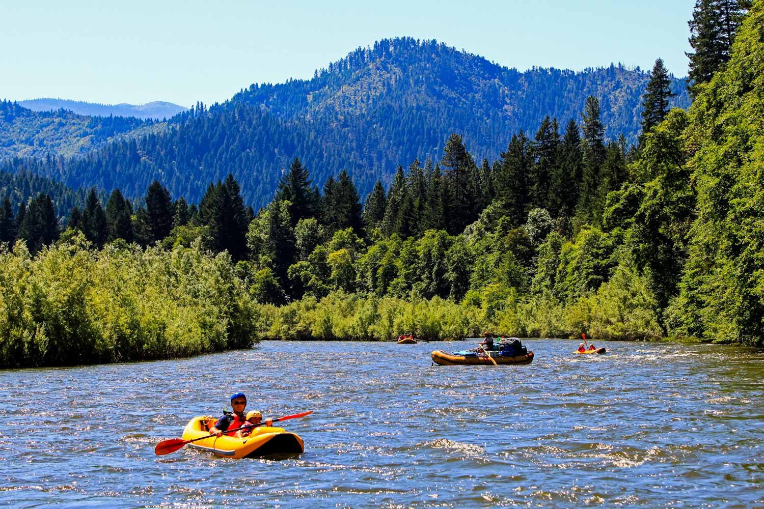 klamath river cougar women River fishing the klamath river got a little bit of extra water this week, and anglers have seen an uptick in the salmon bite for a few days afterwards  more cougar sightings reported, caught.