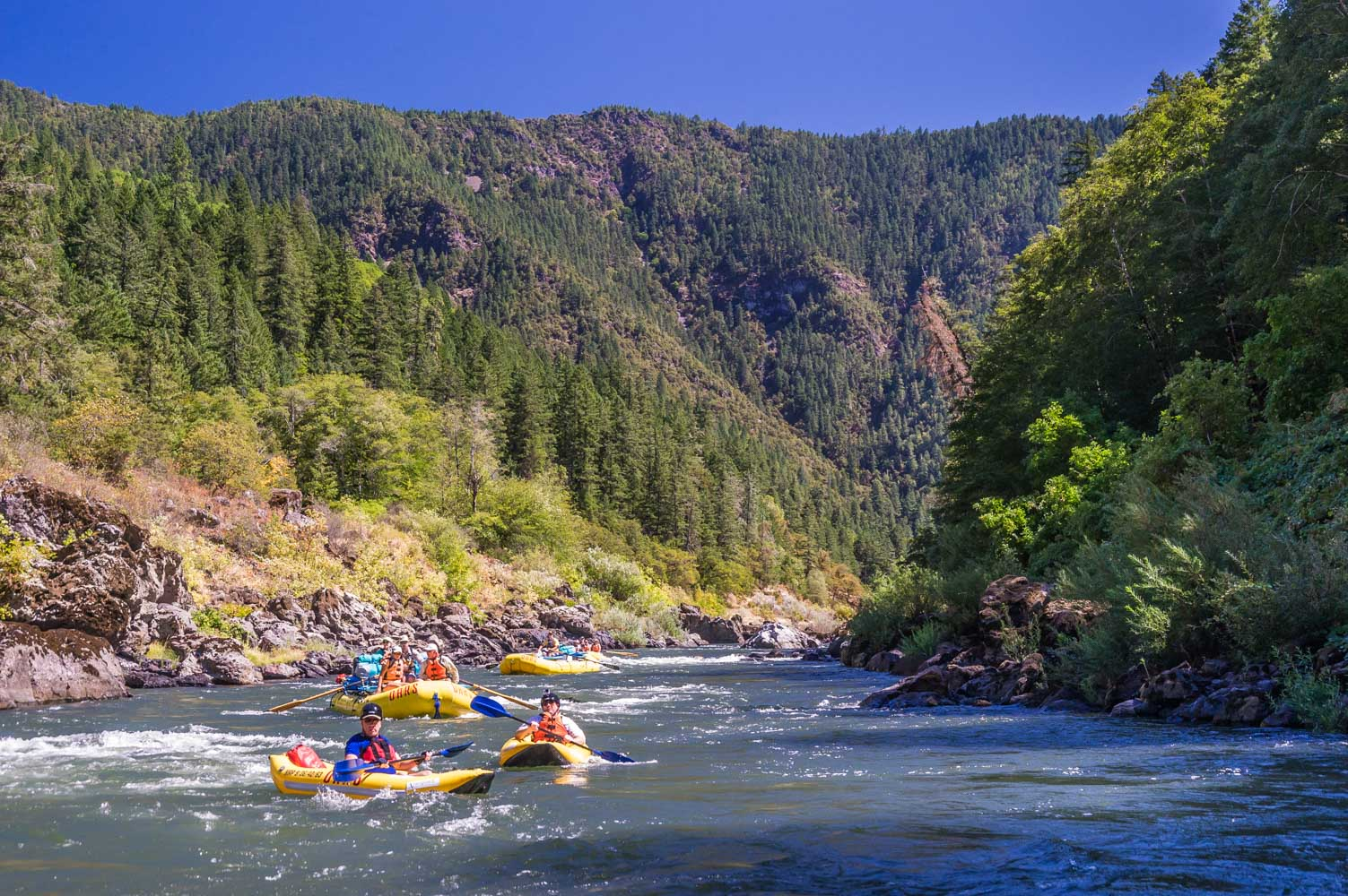 Rogue River Rafting Oregon Family Rafting With Oars