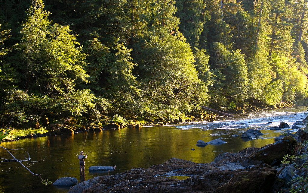 Best River Trails in Oregon | North Umpqua River Trail | Photo: BLM Oregon/Flickr