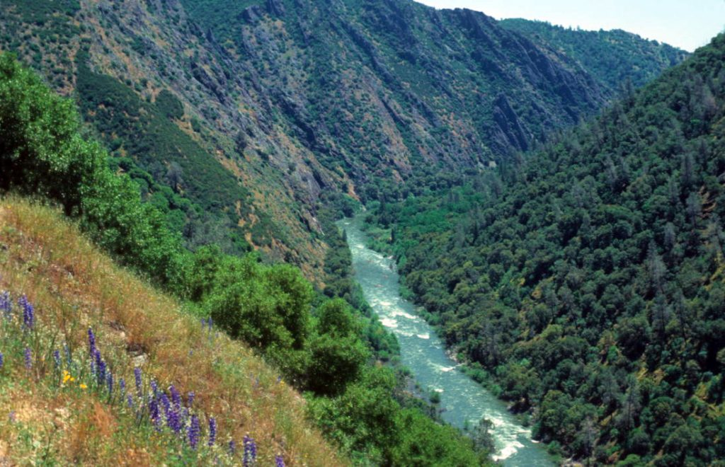 A Game-changer for River Protection: The Loss of the Stanislaus