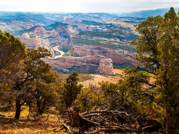 Say No to Drilling Near Dinosaur National Monument