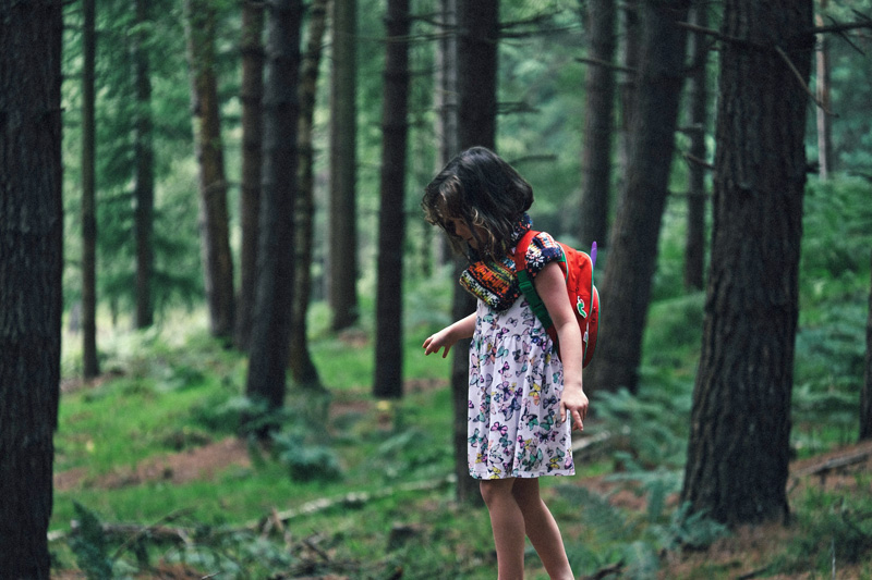 How to Make Nature Walks With Kids a Rewarding Experience